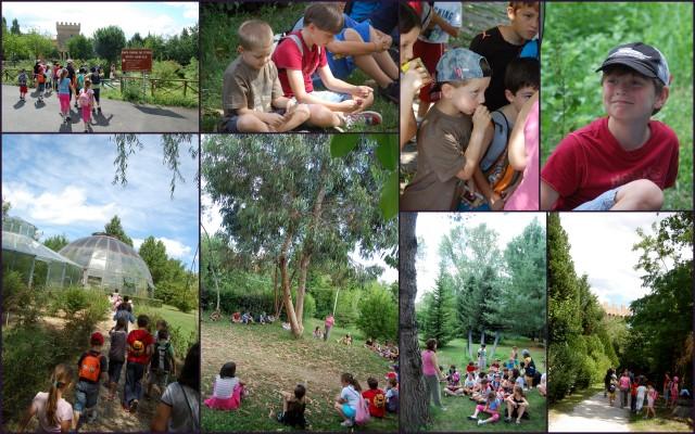 27-luglio bosco_didattico1