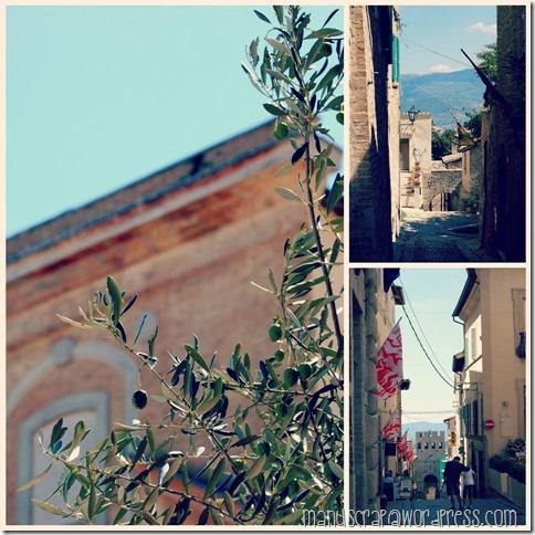 montefalco3